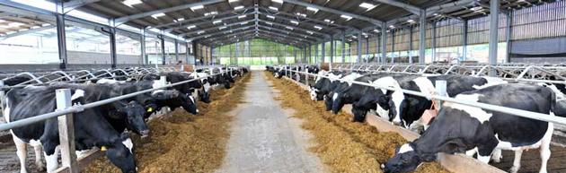 fp-mccann-precast-agriculture