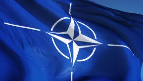 Calian awarded NATO military training contract