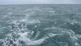 SEA completes successful trials of KraitArray